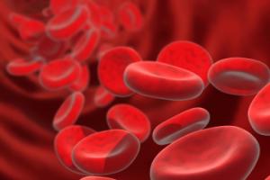 Bloodborne-pathogen-cells