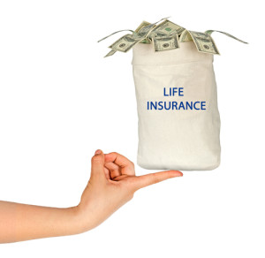 life-insurance-from-american-income-life-300x292